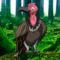 Games2rule Vulture Forest Escape