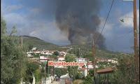 Κορινθία: Ανεξέλεγκτα καίει η φωτιά στη Νεμέα που ξέσπασε αργά το βράδυ (βίντεο)