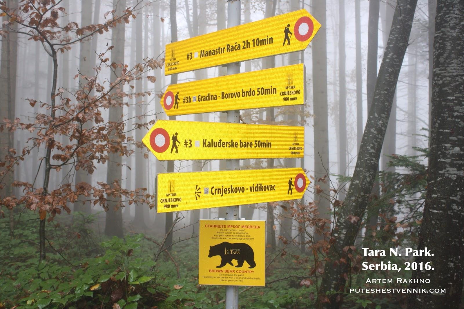Указатель тропы в лесу