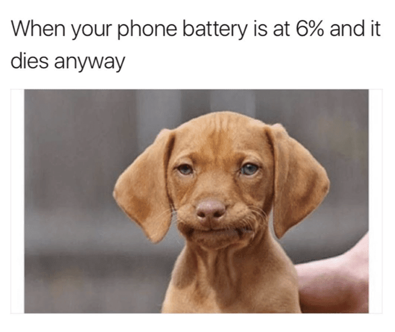 20 Funny Memes Photos of The Day