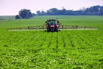 Berikut Ini Teknologi Pertanian Terkini dan Terbaru