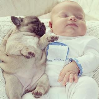 Foto tierna de bebé y cachorro de perro