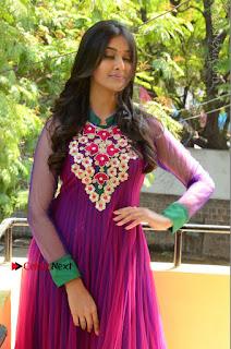 Actress Pooja Jhaveri Latest Stills in Purple Salwar Kameezt at Dwaraka Success Meet  0114.JPG