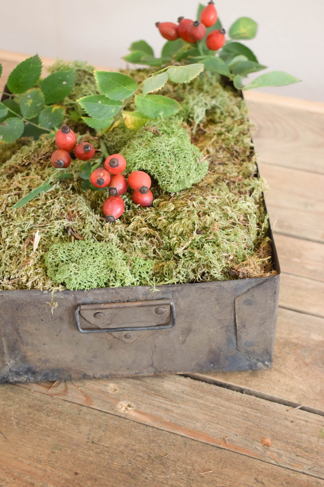 Herbstliche Deko für den Tisch, Sideboard und Konsole. Dekoidee mit Moos, Hagebutte 2