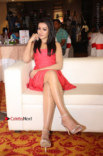 Actress Catherine Tresa Unveils Intex Air Conditioners  0179.jpg