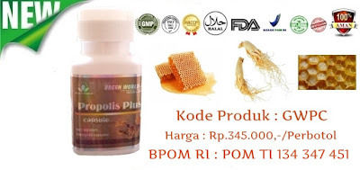 Obat Tradisional Propolis Plus Capsule Green World