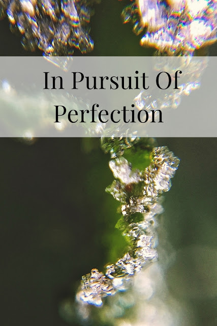 In Pursuit Of Perfection