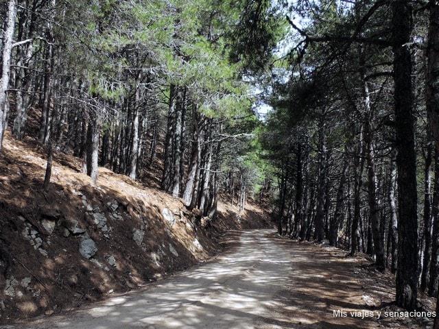 Parque Natural de la Sierra de Cazorla, Andalucia