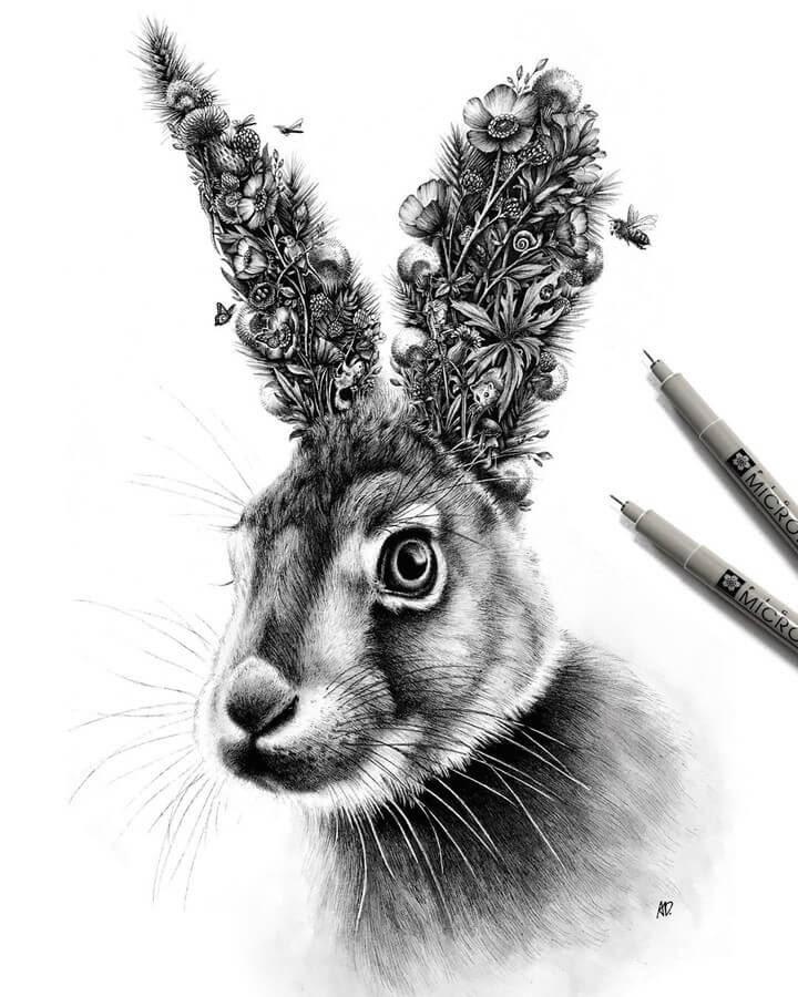 08-Hare-Alyse-Dietel-Animal-Drawings-Surrealism-www-designstack-co