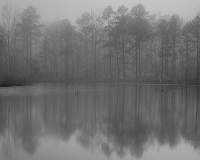 Foggy Pond, Indian Highway