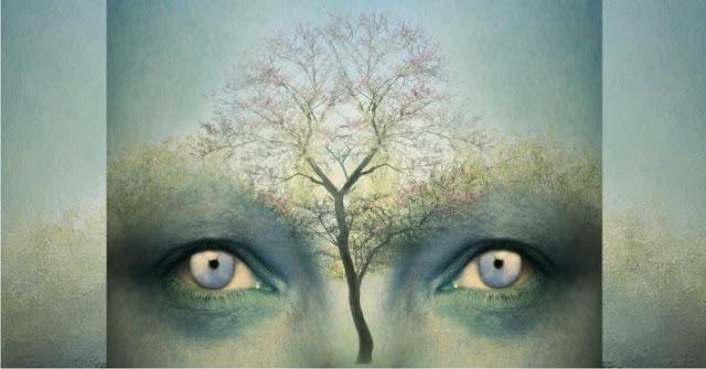 ¿Sabes que padeces emocionalmente? - Test del árbol