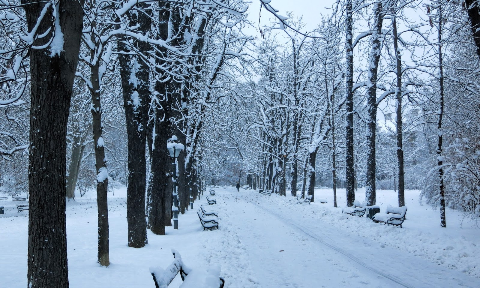 Winter Images HD Wallpapers