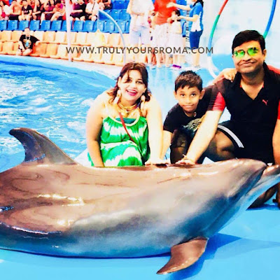 Dolphin Show in Thailand