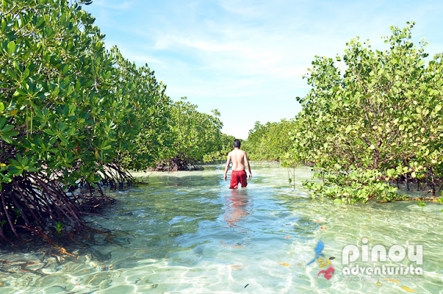 Masbate Tourist Spots Buntod Reef Marine Sanctuary and Sandbar