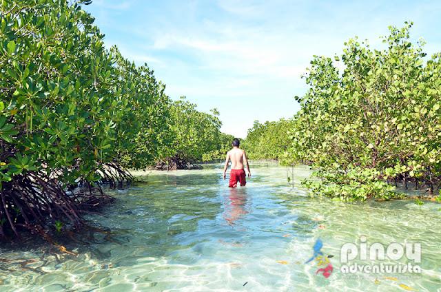 Masbate Tourist Spots Buntod Reef Marine Sanctuary and Sandbar