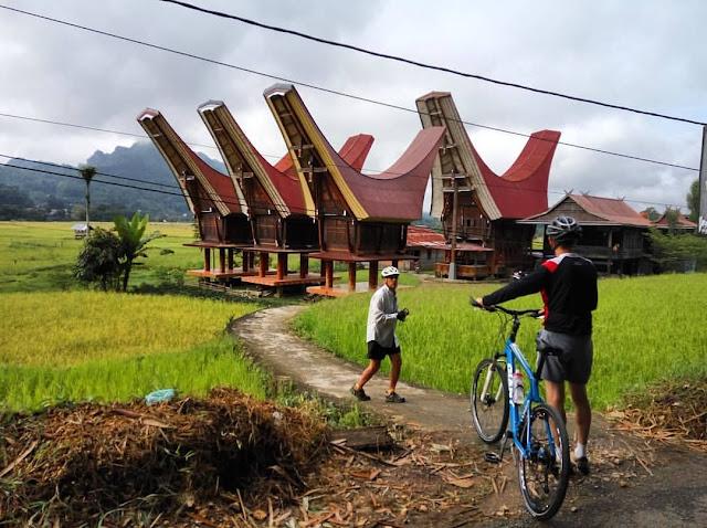 Woww! Berkeliling Toraja dengan Bersepeda, Kamu Akan Dapatkan Sensasi Mengagumkan