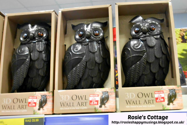 3D Owls Wall Art