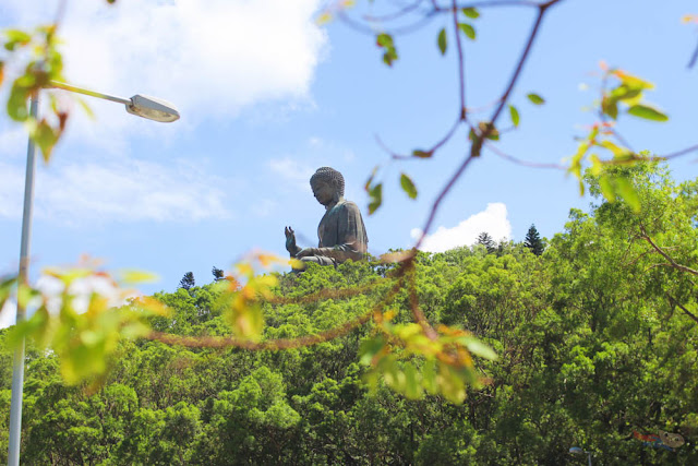 The Big Buddha in Ngong Ping Village