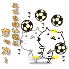 Very white cat and soccer