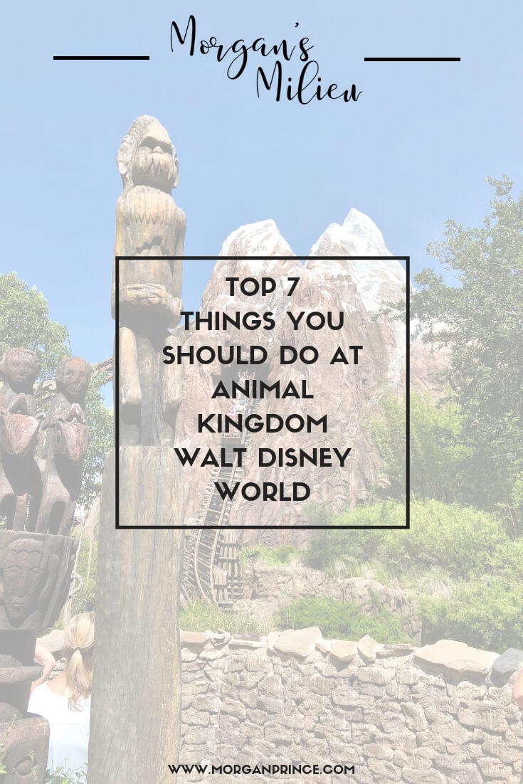 Top 7 Things You Should Do At Animal Kingdom, Walt Disney World | Find out the 7 things you should concentrate on when visiting Animal Kingdom.