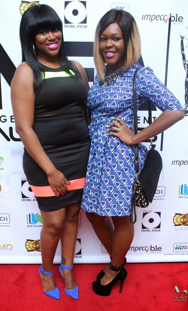 P67A9795 Red carpet photos from 2014 Nigeria Entertainment Awards