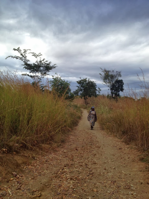 Los caminos hacia Africa
