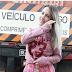 Conheça quem é Aline Ouriques, a caminhoneira que é sucesso no Instagram