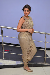 Nikki Galrani in Saree 006.JPG