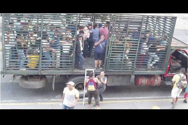 En Aragua solo se ven perreras después de las 5 de la tarde