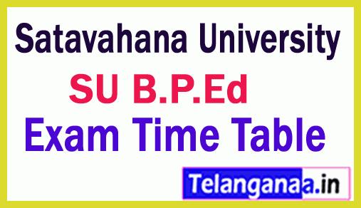 Satavahana University B P Ed  Exam Time Table  Jan 2019