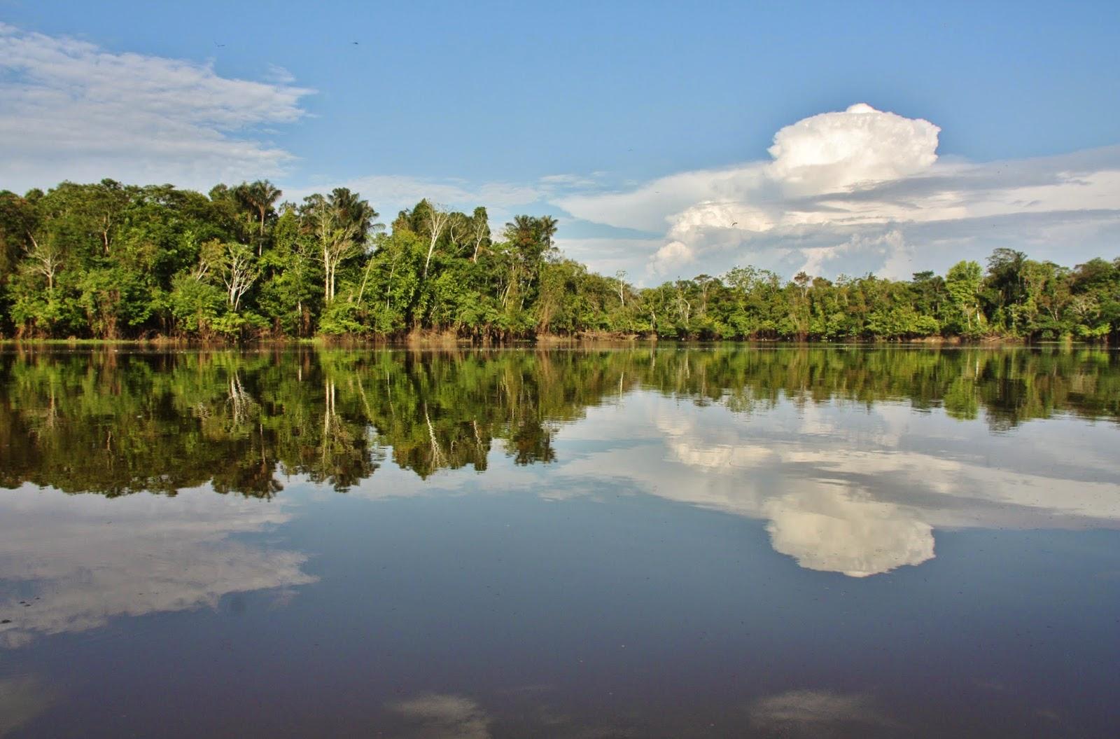 O Rio Japurá na Reserva Sustentável Mamirauá.