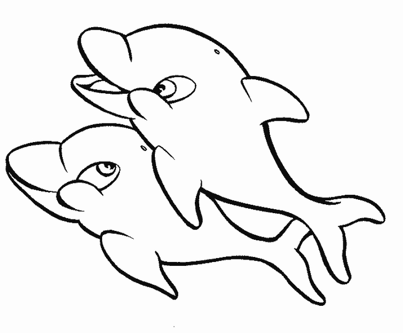 Free Coloring Pages Two Dolphins Coloring Pages