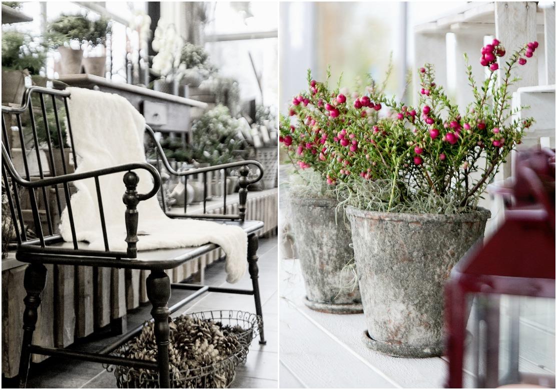 kukkakauppa, kirkkonummi, valokuvauskurssi, Frida Steiner, photography, valokuvaus