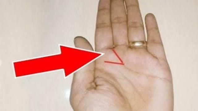 Jika Memiliki Tanda Ini di Telapak Tangan Kiri, Kamu Orang yang Beruntung