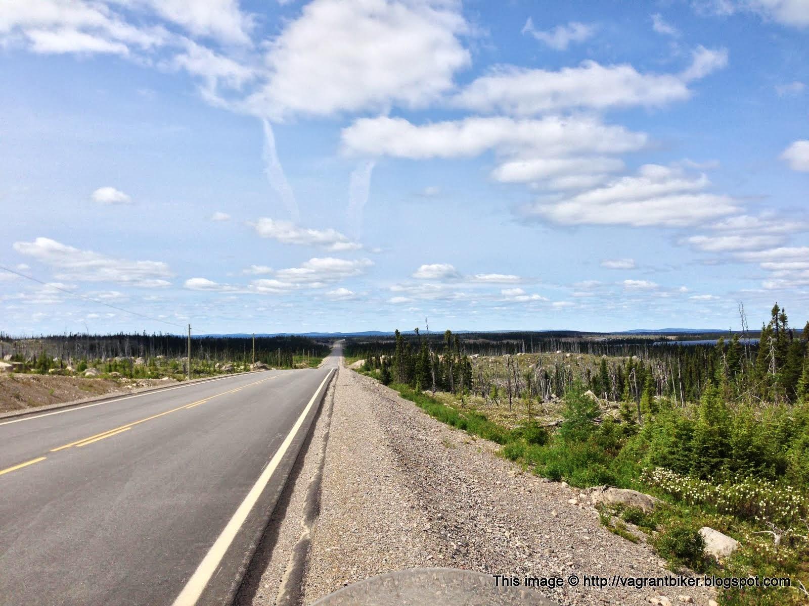 Labrador city escorts Shemale Maritimes - Shemale Maritimes Escorts Page 1