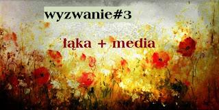 http://hubka38.blogspot.com/2016/06/wyzwanie3.html