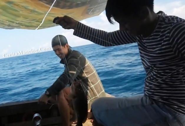 Mancing Handline Dapat Kerapu Dan Ikan Cermin Mantab Bro