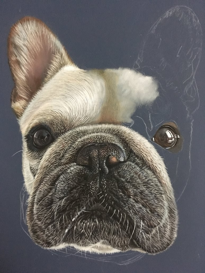 03-Piggy-The-French-Bulldog-Frenchie-WIP-Ivan-Hoo-Animals-Translated-to-Realistic-Drawings-www-designstack-co
