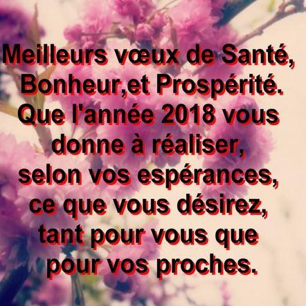 message de bonne année 2018