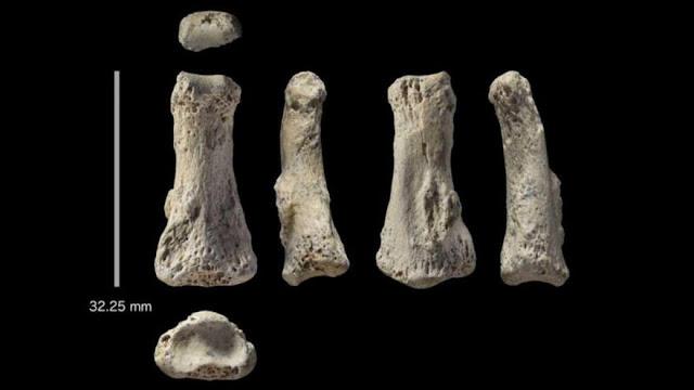 Un dedo de 85.000 años cuestiona teorías sobre historia humana