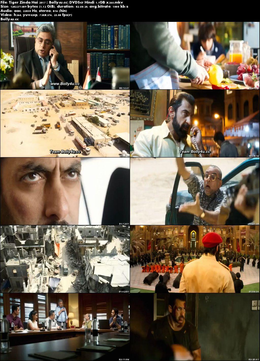 Tiger Zinda Hai 2017 DVDScr  450MB Full Hindi Movie Download 480p