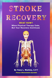Stroke Recovery (Author Interview)