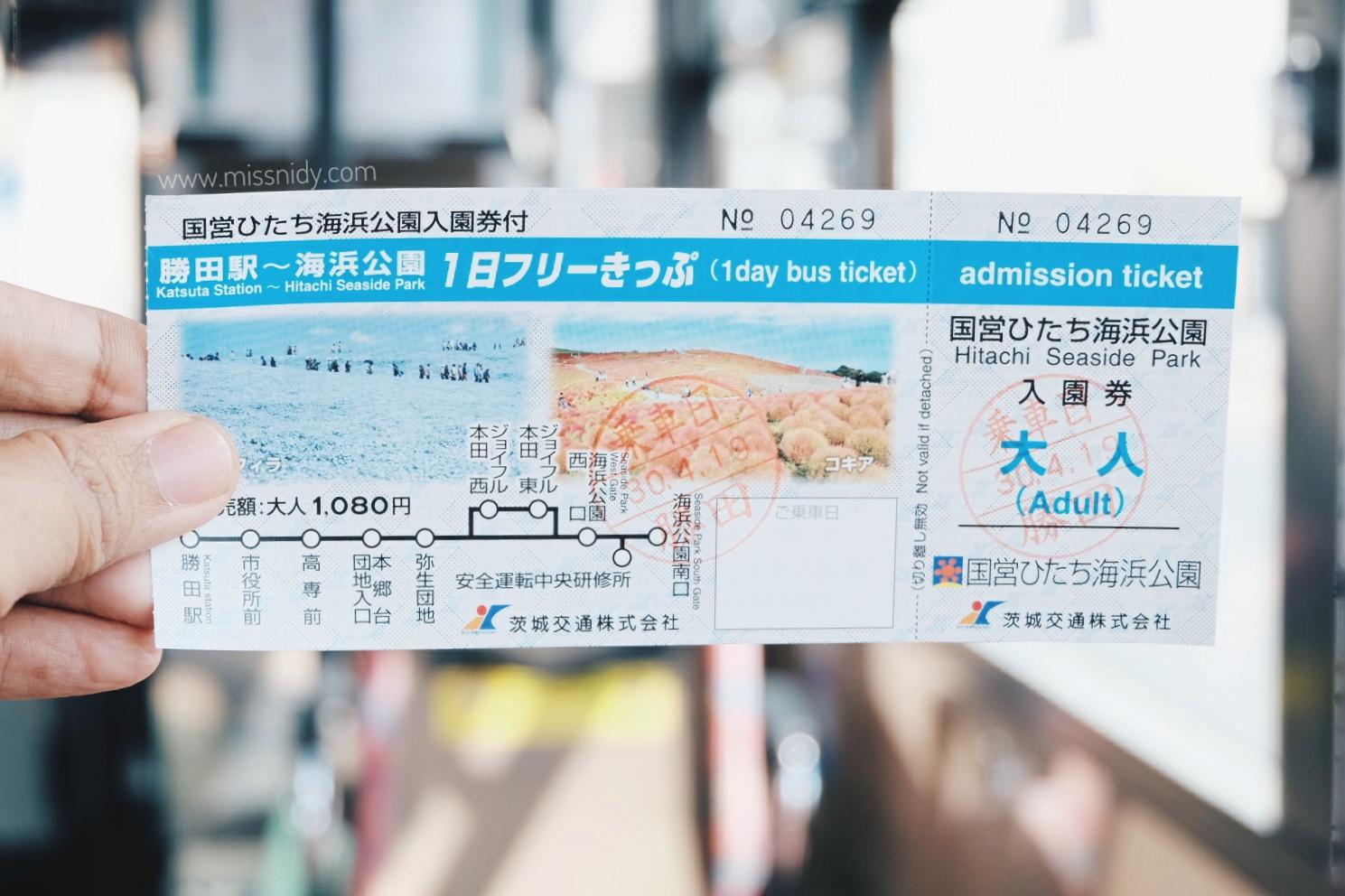 harga tiket masuk hitachi seaside park