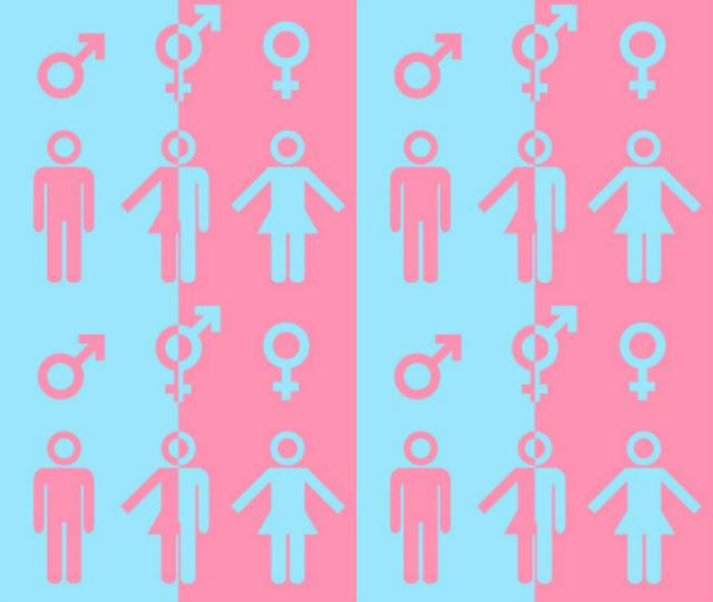 transexualidade e a criança
