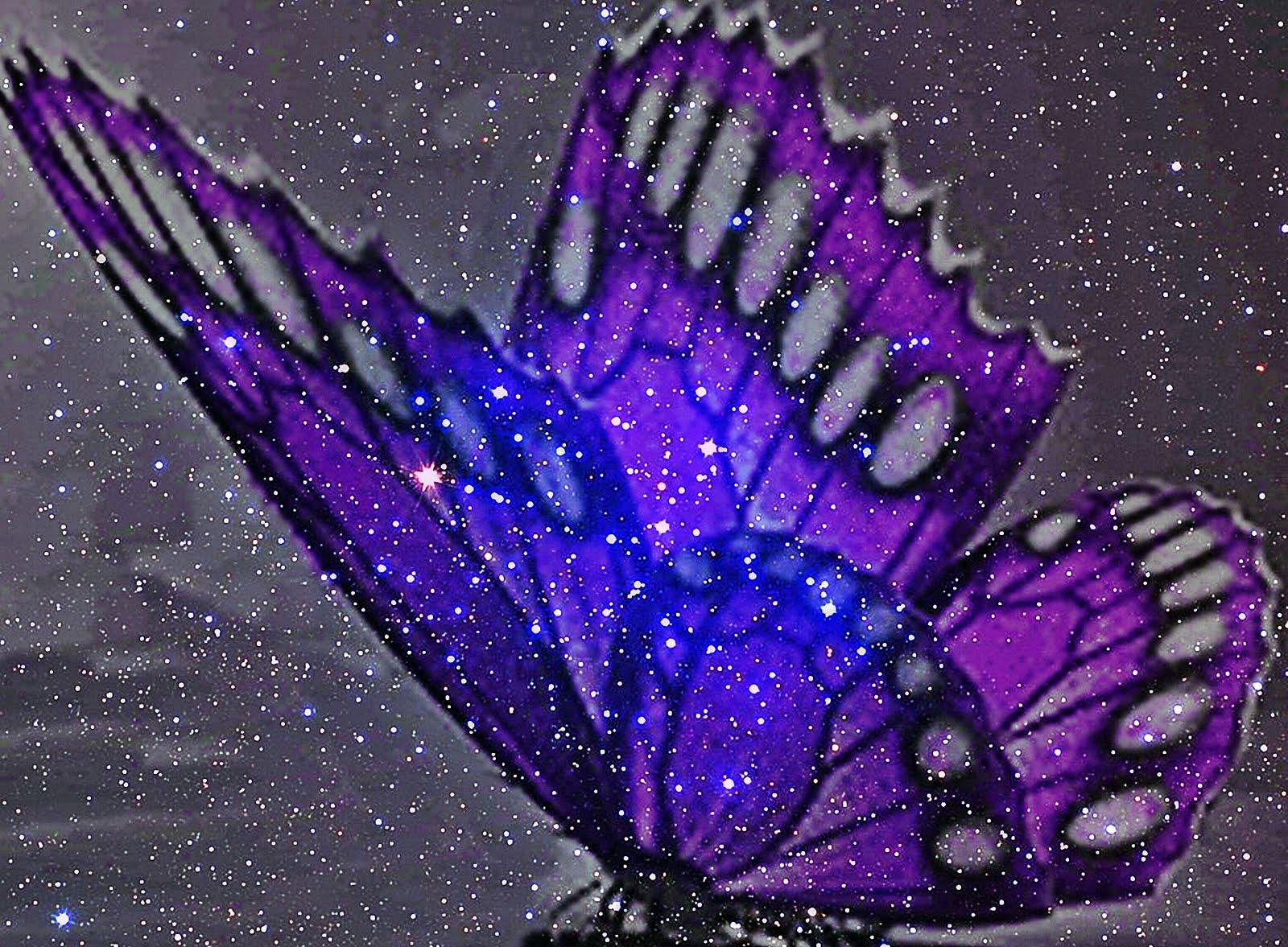 Fondos De Mariposas Moradas Con Movimiento
