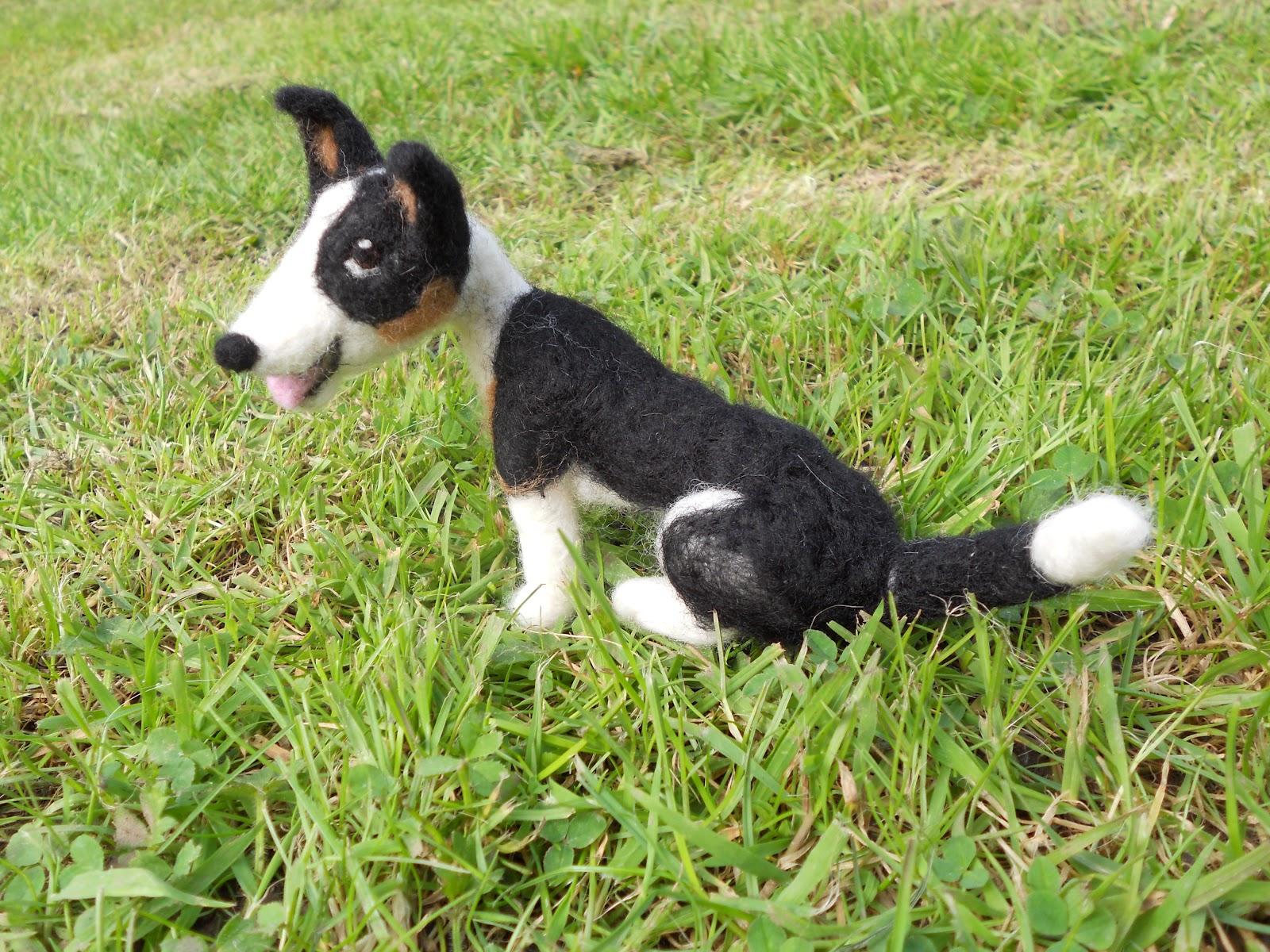 Ben Mcfuzzylugs : A-Z of dog breeds - Border Collie - photo#7