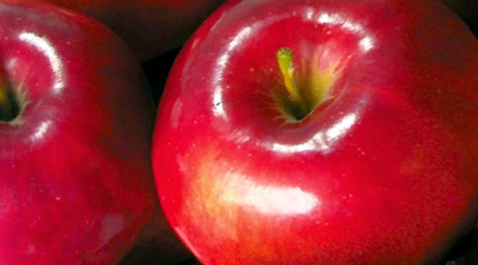 10 Manfaat Sehat Mengkonsumsi Buah Apel