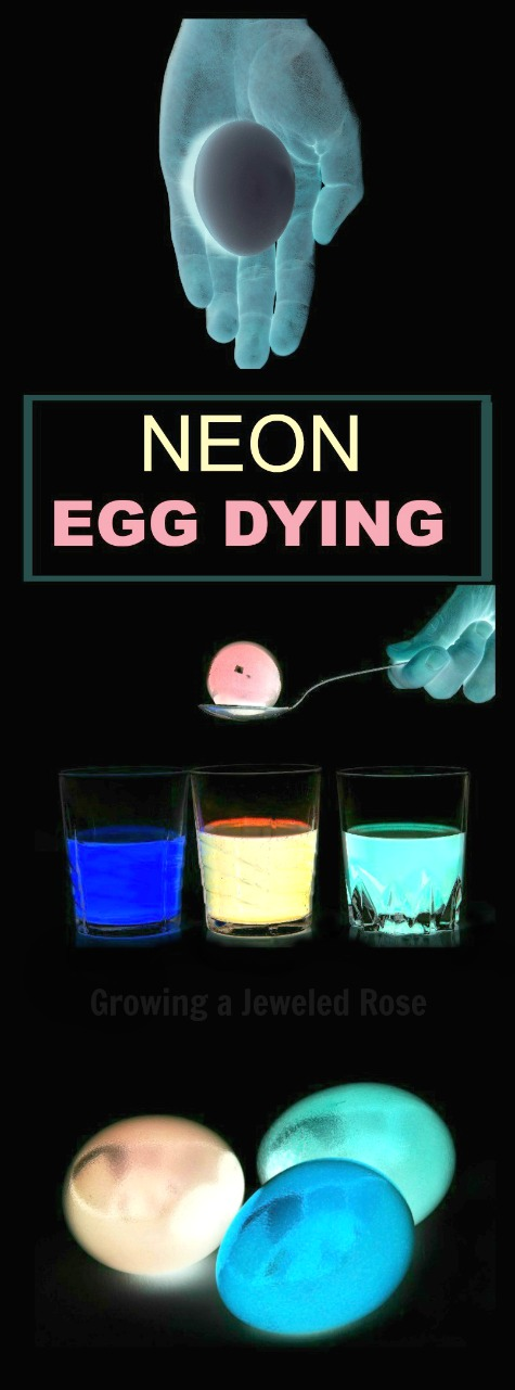 NEON EGG DYING FOR KIDS.  Are you kidding?  2017 is so cool!