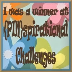 2 x {PIN}spirational Challenge Winner
