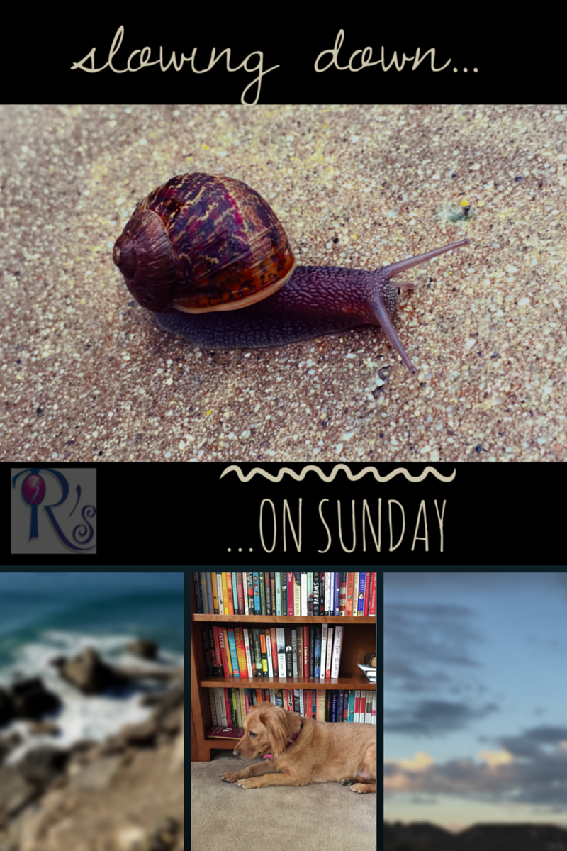 The Sunday Slowdown: weekly reflections at The 3 Rs Blog